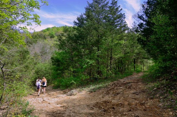 Photograph of hikers on the Silver Trail at Busiek State Forest and Wildlife Area