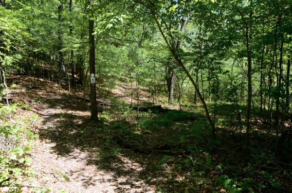 Busiek State Forest and Wildlife Area - New addition to the White Trail