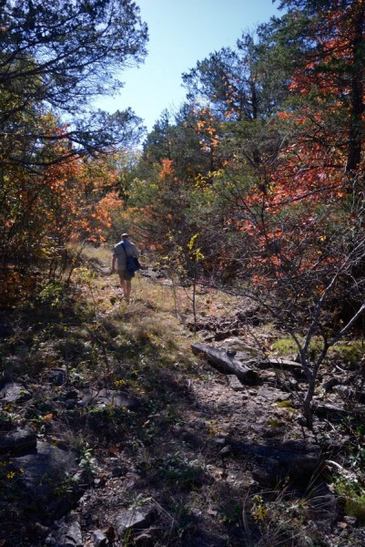 Gary on the Pee Hollow Trail, Hercules Glades Wilderness