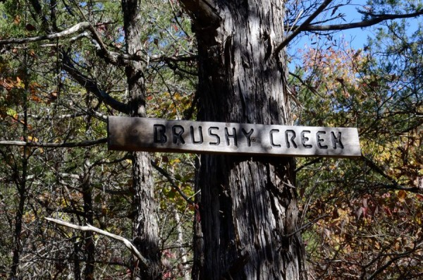 Hercules Glades Wilderness - Brushy Creek