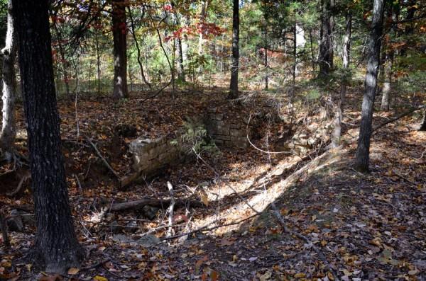 Hercules Glades Wilderness - Building ruins