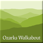 Logo - an Ozarks wilderness silhouette