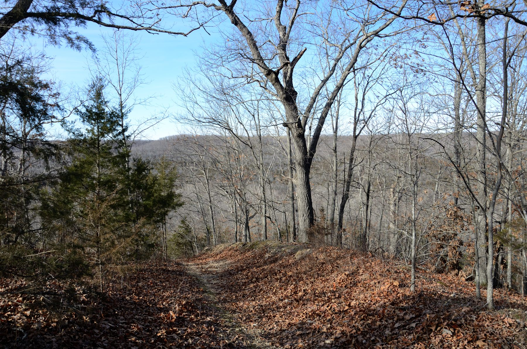 Winter Hike on the Silver Trail at Busiek