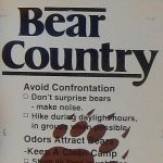 The bare essentials of staying safe in Black Bear country – link