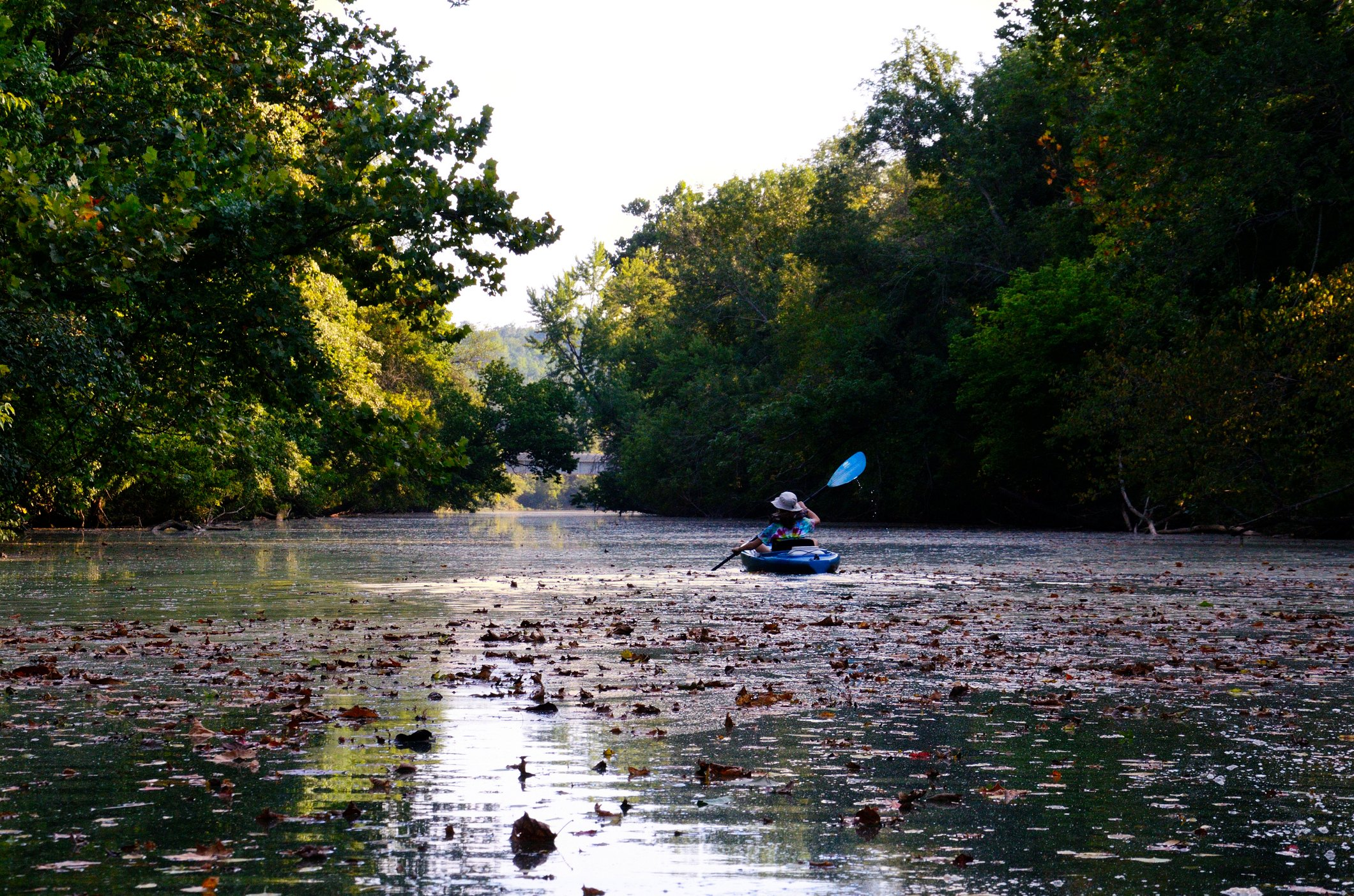 Kayak among fall leaves on the surface of the James River above lake Springfield
