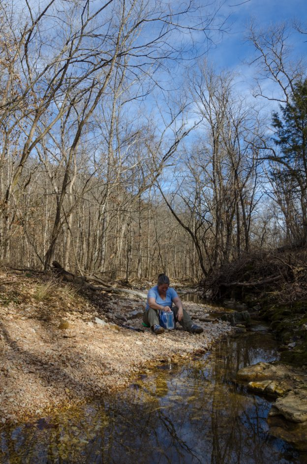 Ginger takes advantage of my photo-session to sit down and take a drink by a creek on the White trail at Busiek.  January 30, 2016   Copyright © 2016, all rights reserved