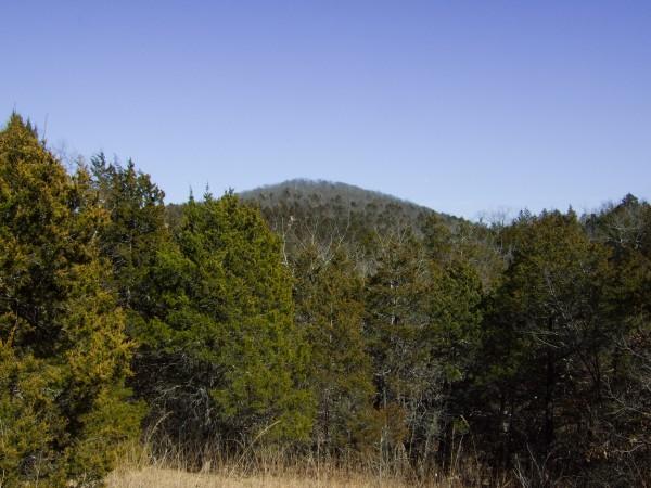 Looking East across Pees Hollow